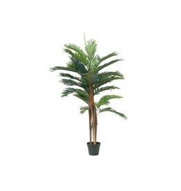 EUROPALMS EUROPALMS Kentia palm tree, artificial plant, 120cm