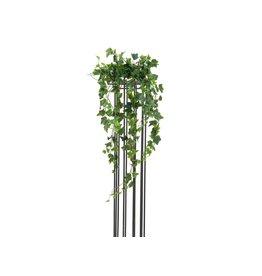 EUROPALMS EUROPALMS Ivy Bush, Premium, 70cm