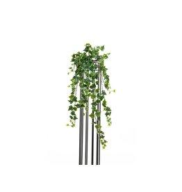 EUROPALMS EUROPALMS Hollan Ivy Bush, Premium, 70cm