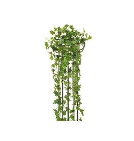 EUROPALMS EUROPALMS Ivy Bush, Premium, 170cm