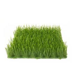 EUROPALMS EUROPALMS Artificial grass tile, sun, 25x25cm