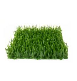 EUROPALMS EUROPALMS Artificial grass tile, shade, 25x25cm