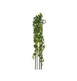 EUROPALMS EUROPALMS Grape Bush, Premium, 170cm