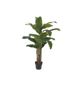 EUROPALMS EUROPALMS Banana tree, artificial plant, 120cm