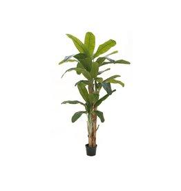 EUROPALMS EUROPALMS Banana tree, artificial plant, 240cm