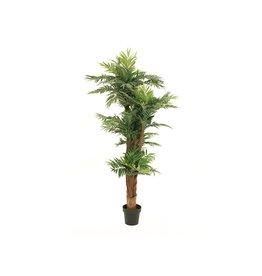 EUROPALMS EUROPALMS Areca palm, artificial plant, 170cm