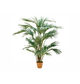 EUROPALMS EUROPALMS Canary date palm, artificial plant, 240cm