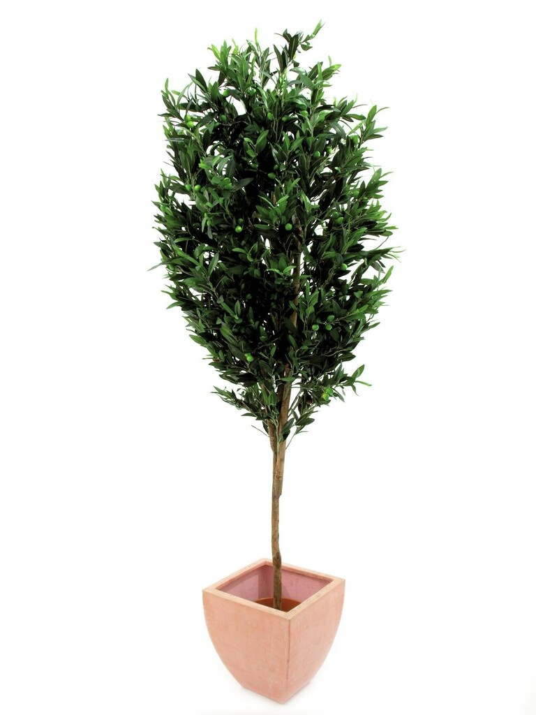 EUROPALMS EUROPALMS Olive tree with fruits, artificial, 200cm