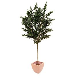 EUROPALMS EUROPALMS Olive tree with fruits, artificial, 250cm