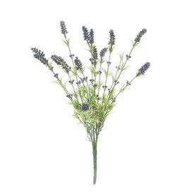 EUROPALMS EUROPALMS Lavender bush 61cm