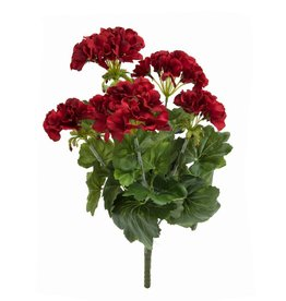 EUROPALMS EUROPALMS Geranium red 42cm