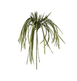 EUROPALMS EUROPALMS Seagrass (EVA), green