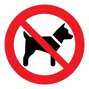 """pictogram """"verboden voor honden"""" sticker"""