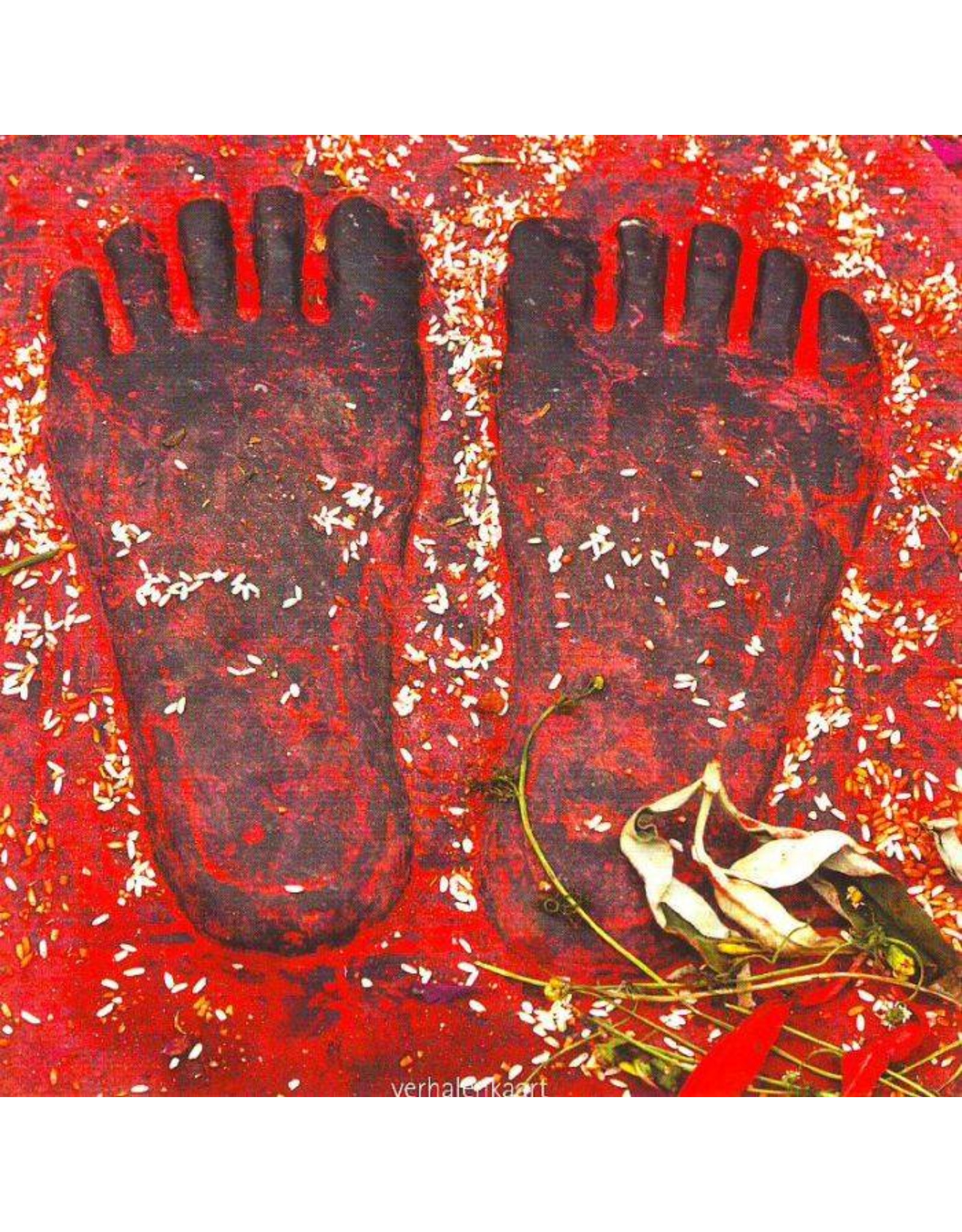 ZintenZ postcard De schoenen van Ghandi
