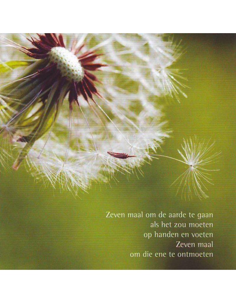 ZintenZ postcard Zeven maal om de aarde
