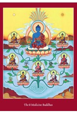 Tibetan Buddhist Art postcard The 8 Medicine Buddhas