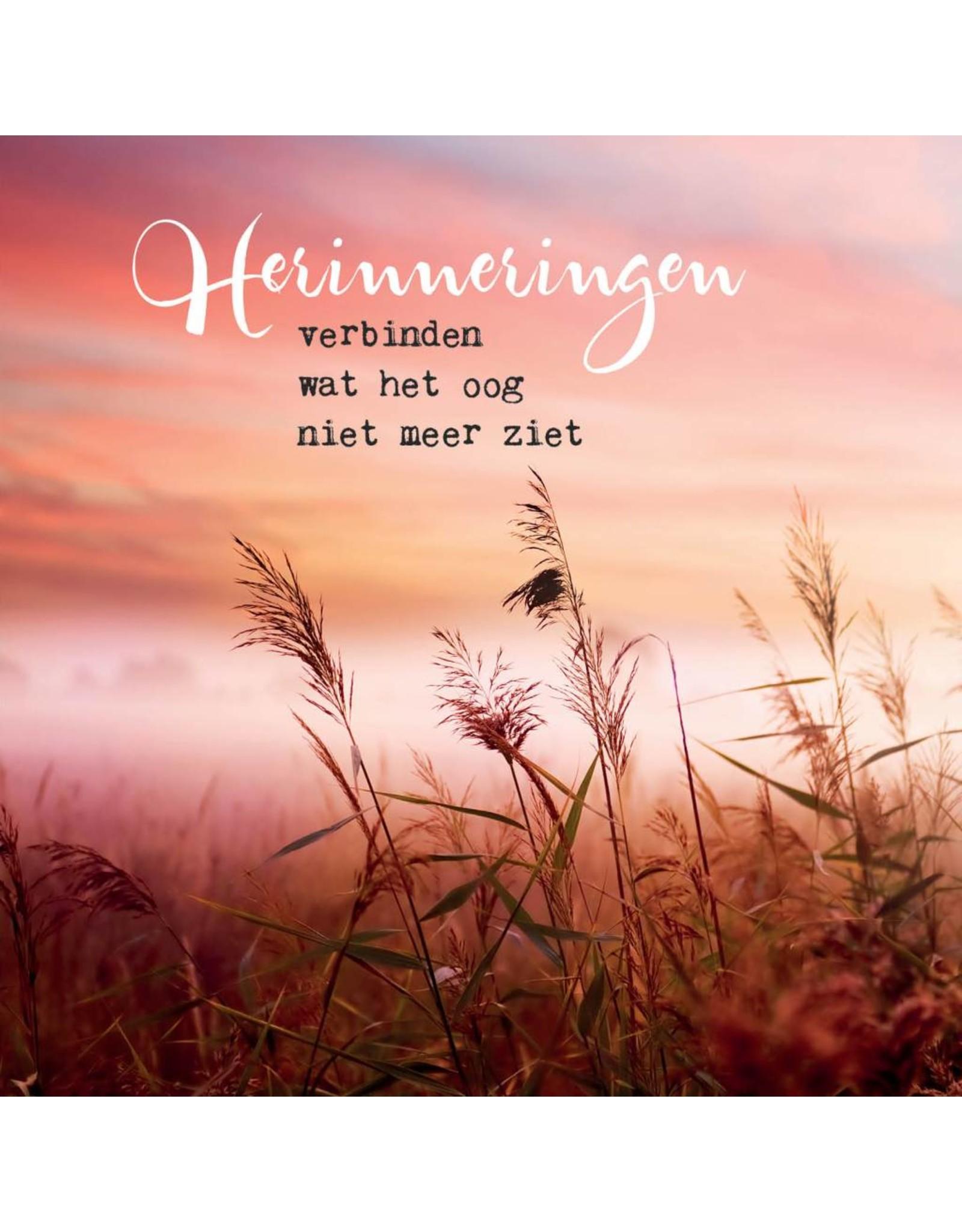 ZintenZ postcard Herinneringen