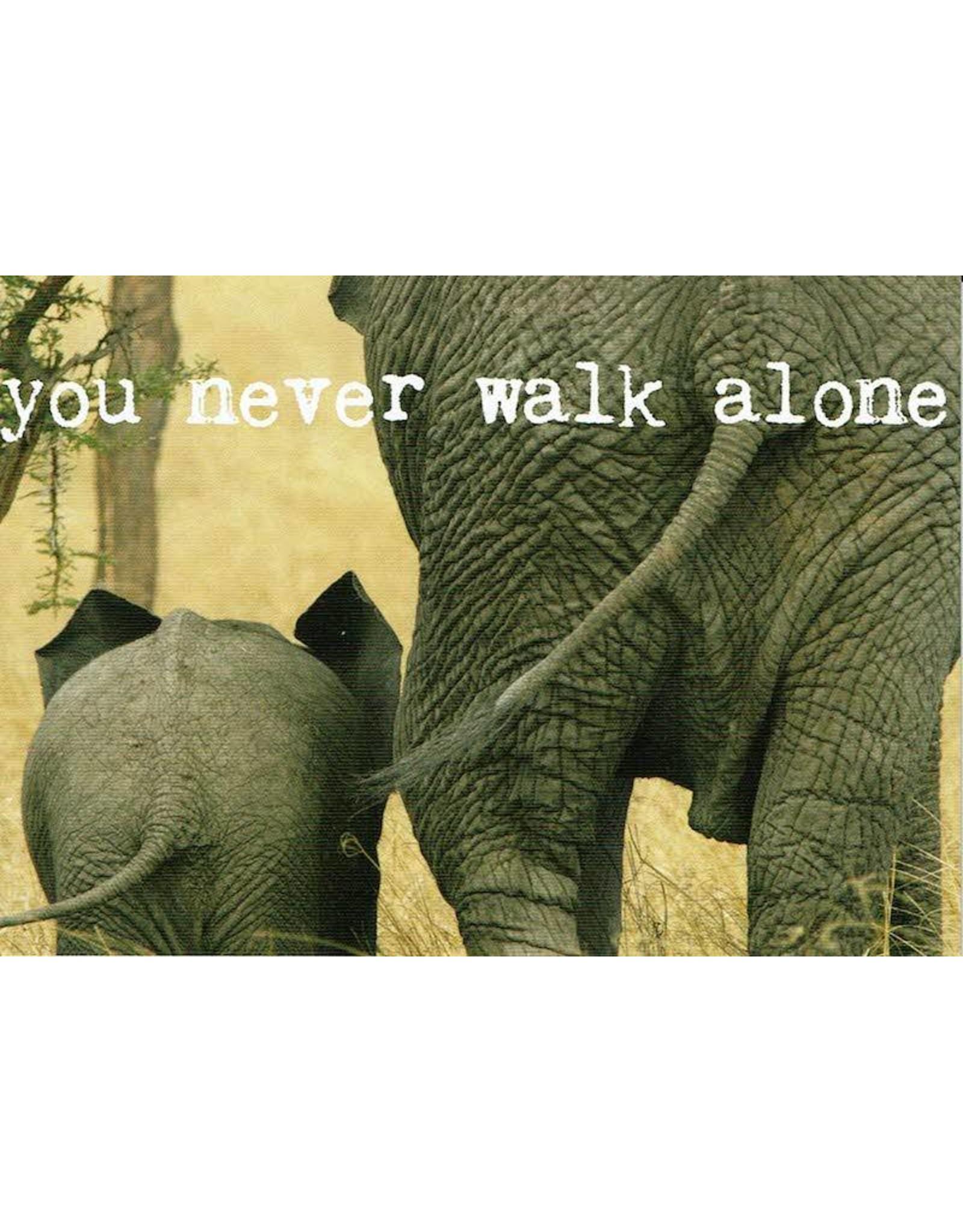 ZintenZ postkaart You never walk alone