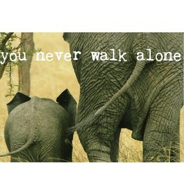 ZintenZ postcard You never walk alone
