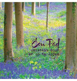 ZintenZ postkaart Een pad ontstaat door