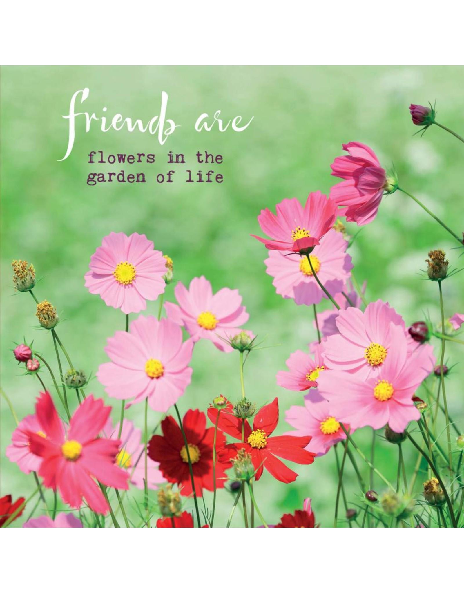 ZintenZ postcard Friends are