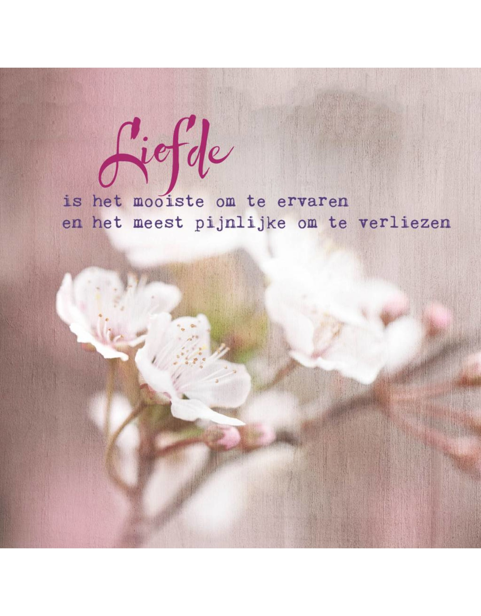 ZintenZ postkaart Liefde is het mooiste