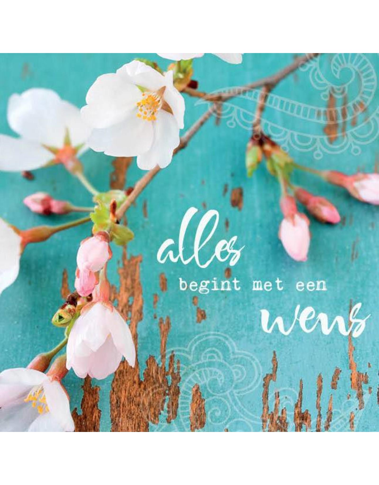 ZintenZ postcard Alles begint