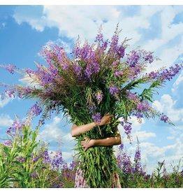 ZintenZ postcard Flowers