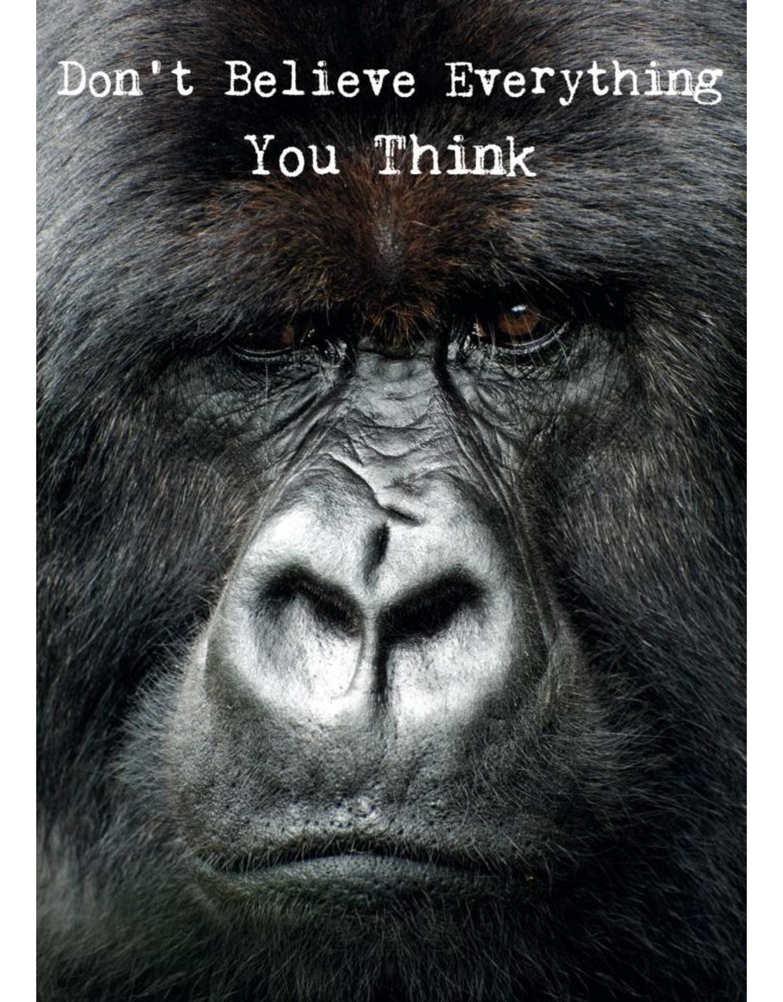ZintenZ postkaart Don't believe everything you think