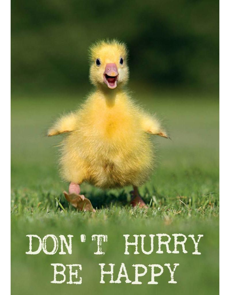 ZintenZ postkaart Don't hurry Be happy