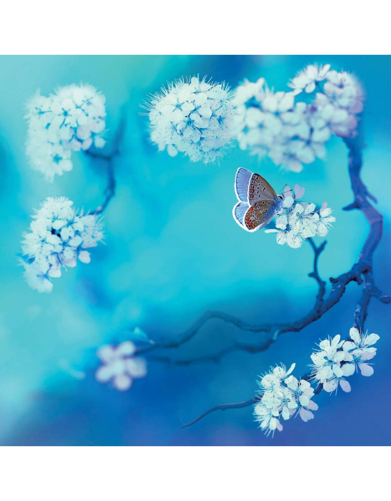 ZintenZ postkaart Paarse vlinder