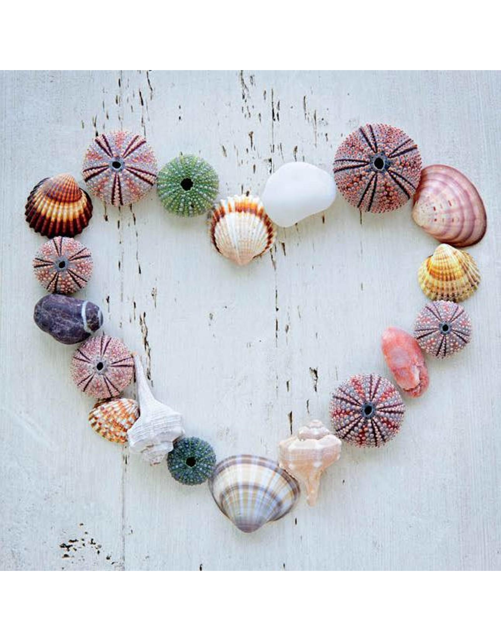 ZintenZ postcard Heart shells