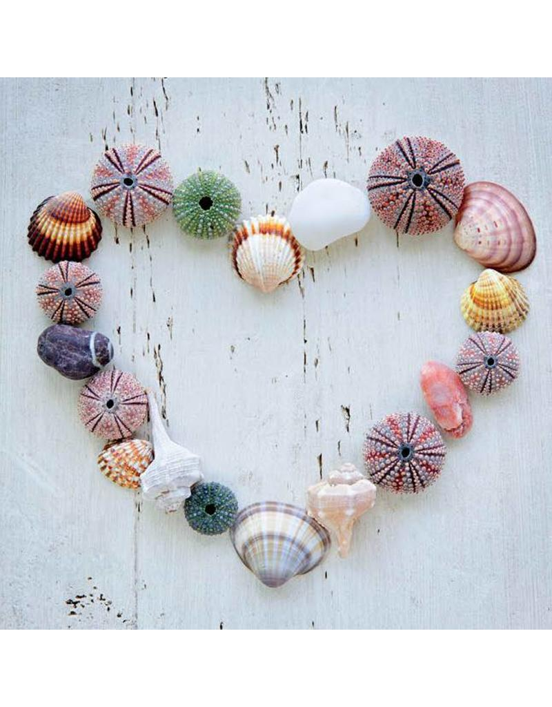 ZintenZ postcard Heart shells