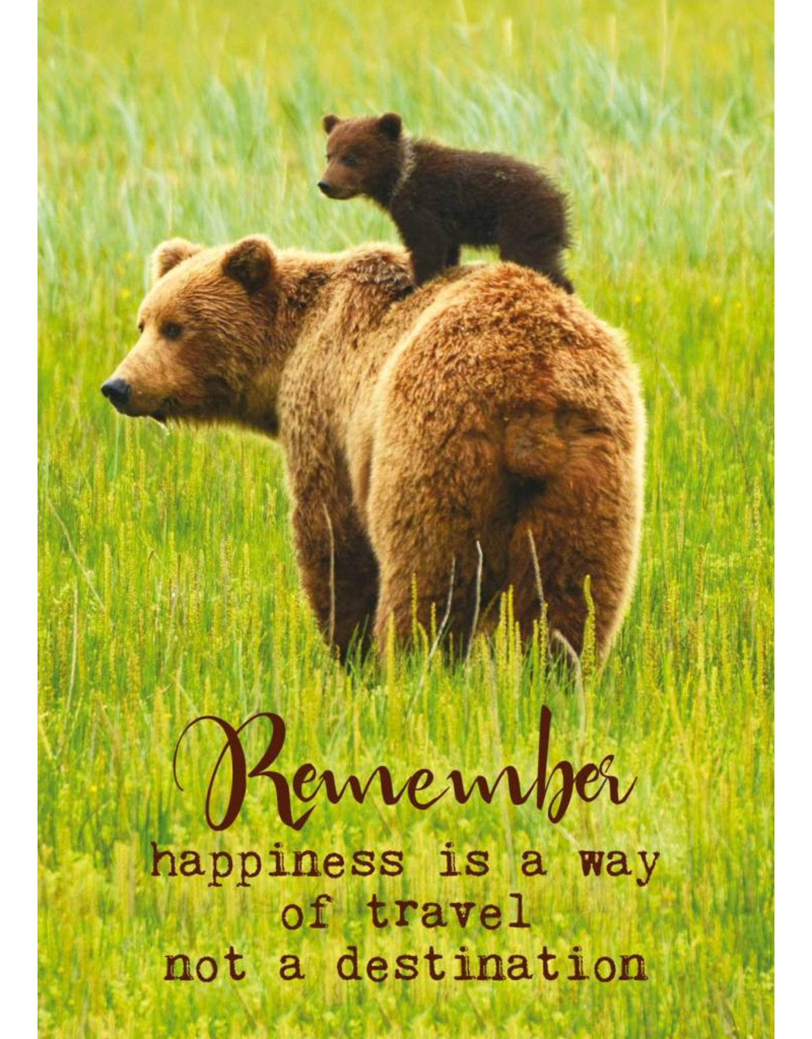 ZintenZ postcard Remember happiness is a way