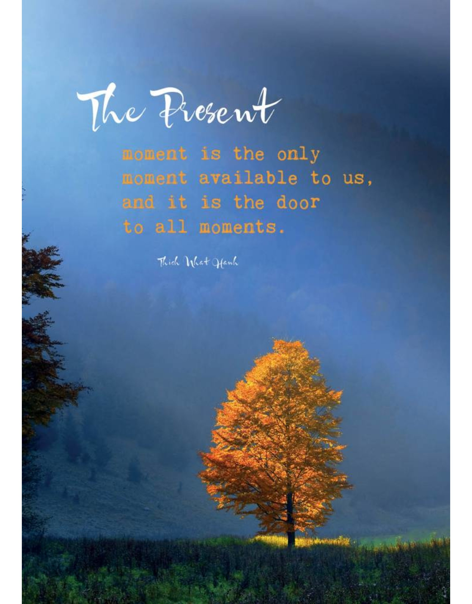 ZintenZ postkaart The present moment is the only moment