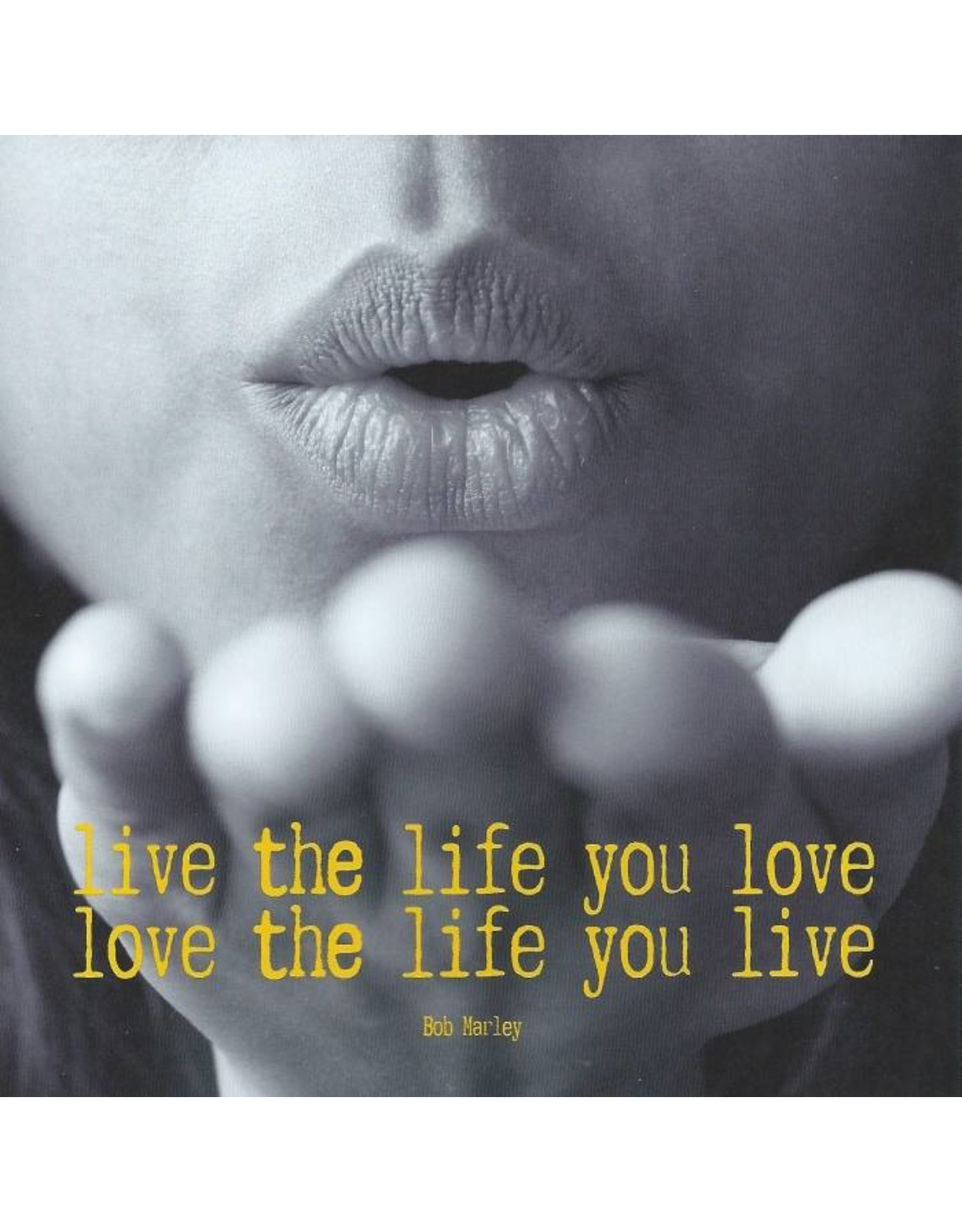ZintenZ postkaart Live the life you love