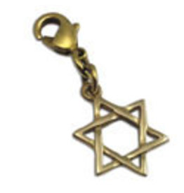Shanti charm Star of David brass