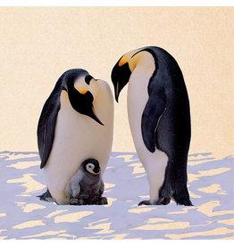 ZintenZ postcard Penguins