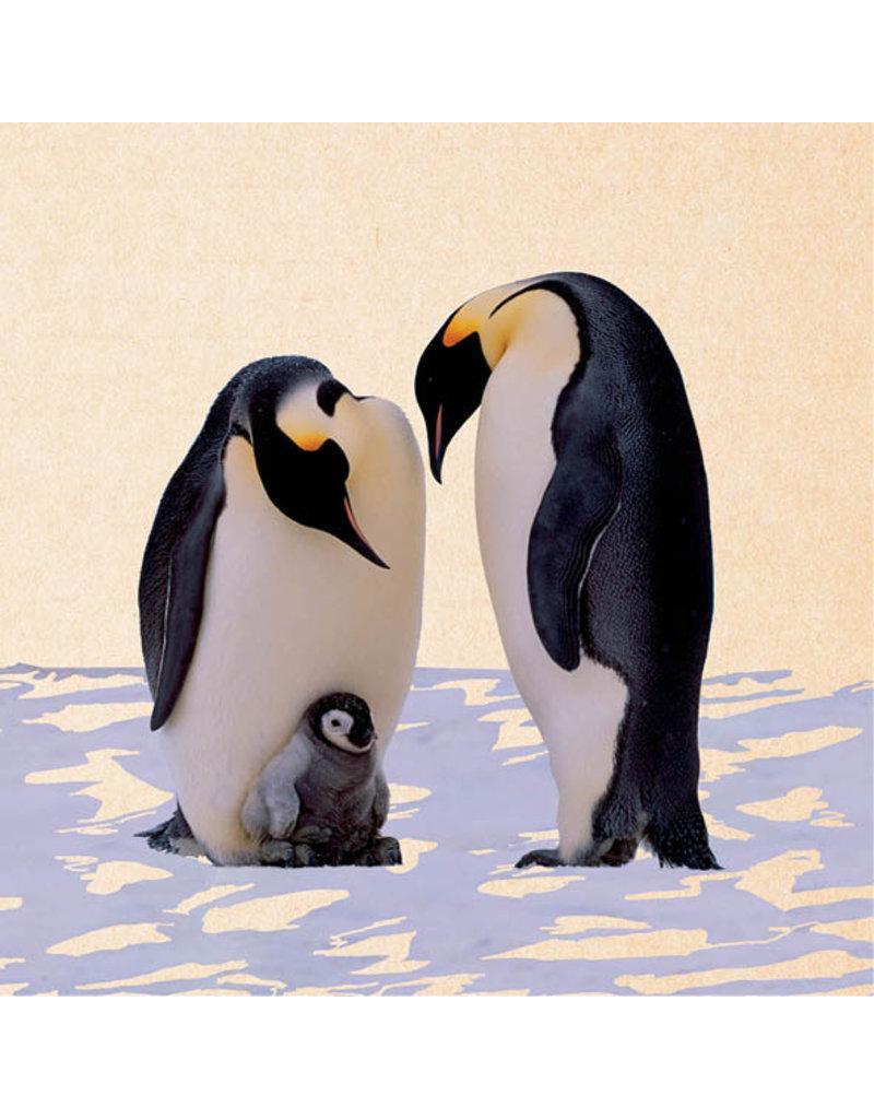 ZintenZ postkaart Pinguins
