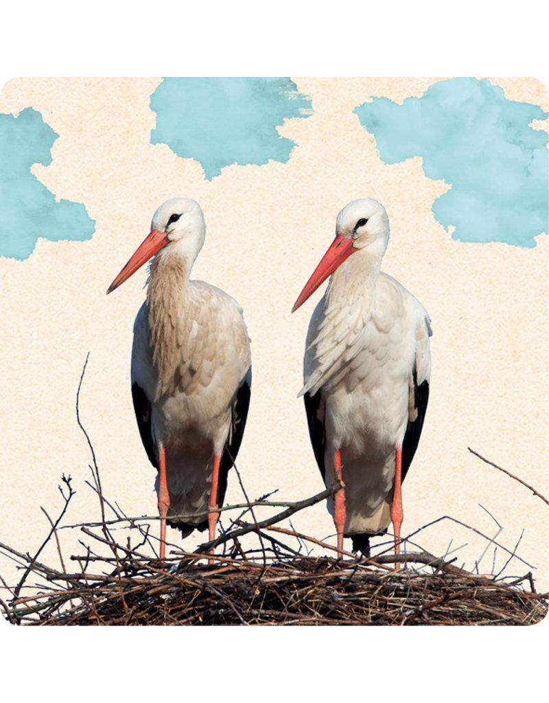 ZintenZ postkaart Ooievaars