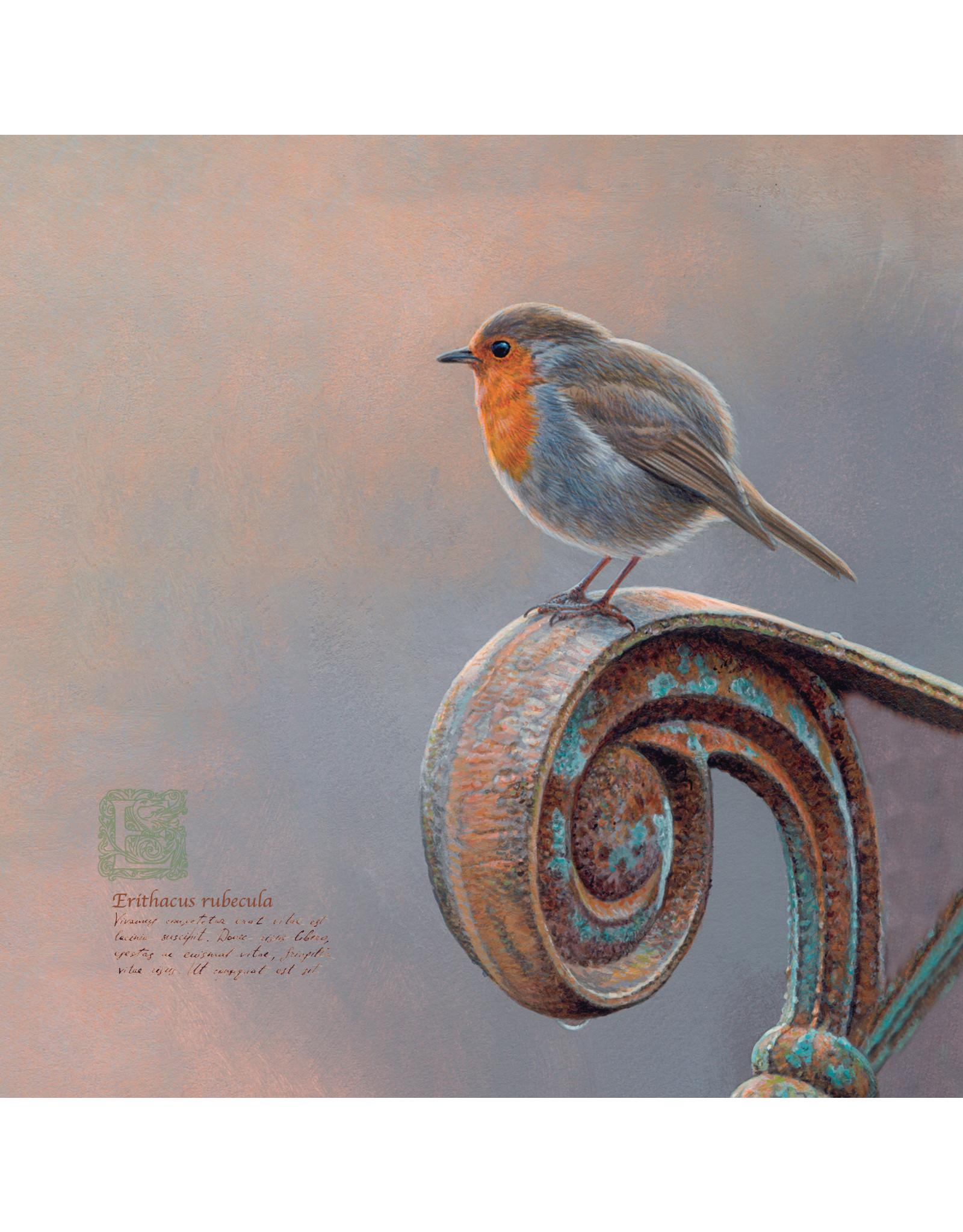 ZintenZ postcard Robin