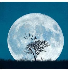 ZintenZ postcard Full moon