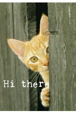 ZintenZ postkaart Hi there