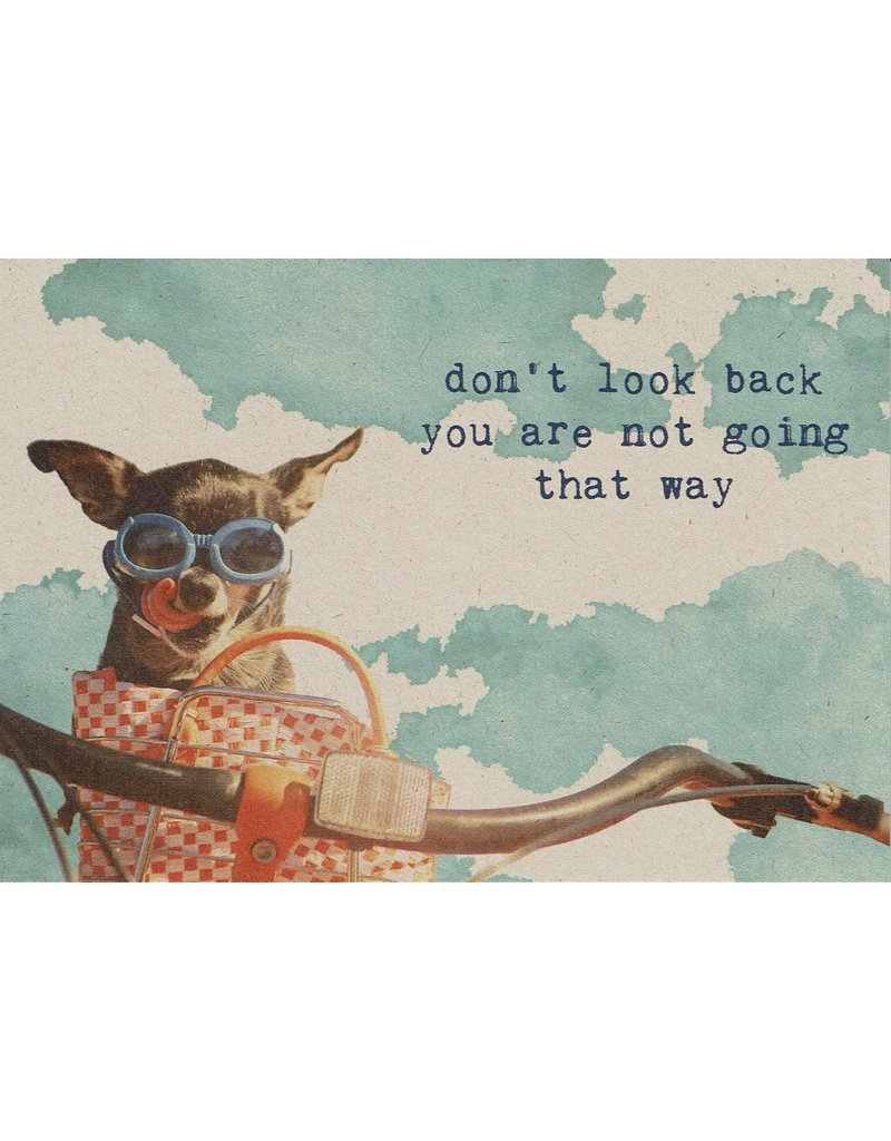 ZintenZ postkaart Don't look back