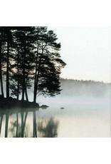 ZintenZ postcard Mist