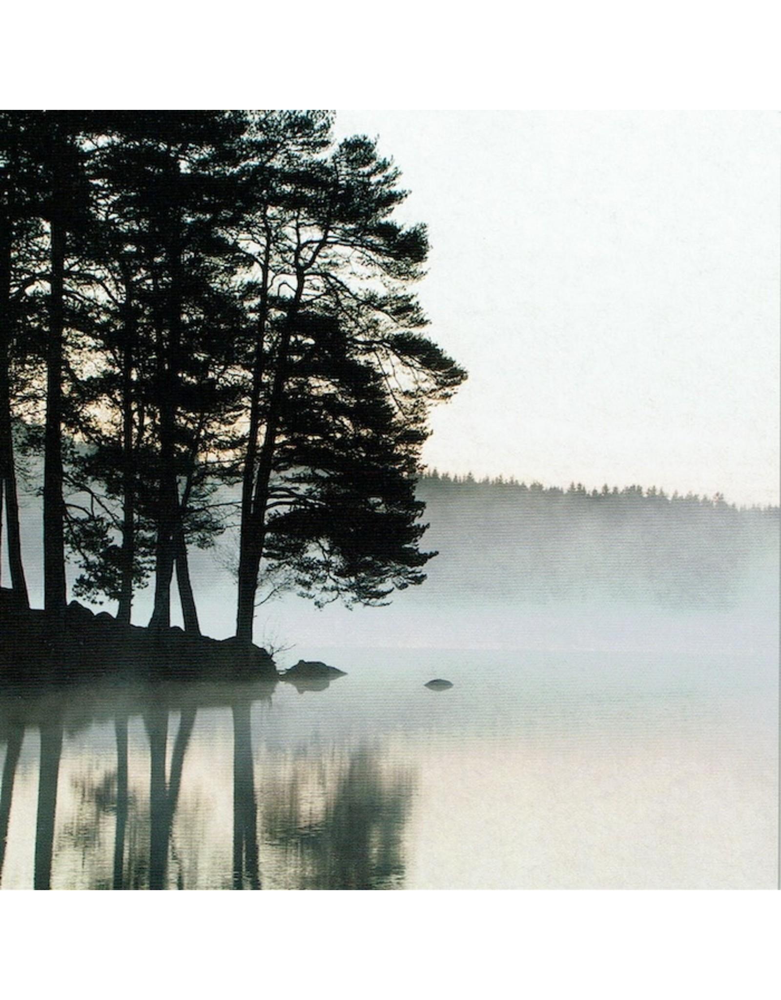 ZintenZ postkaart Mist