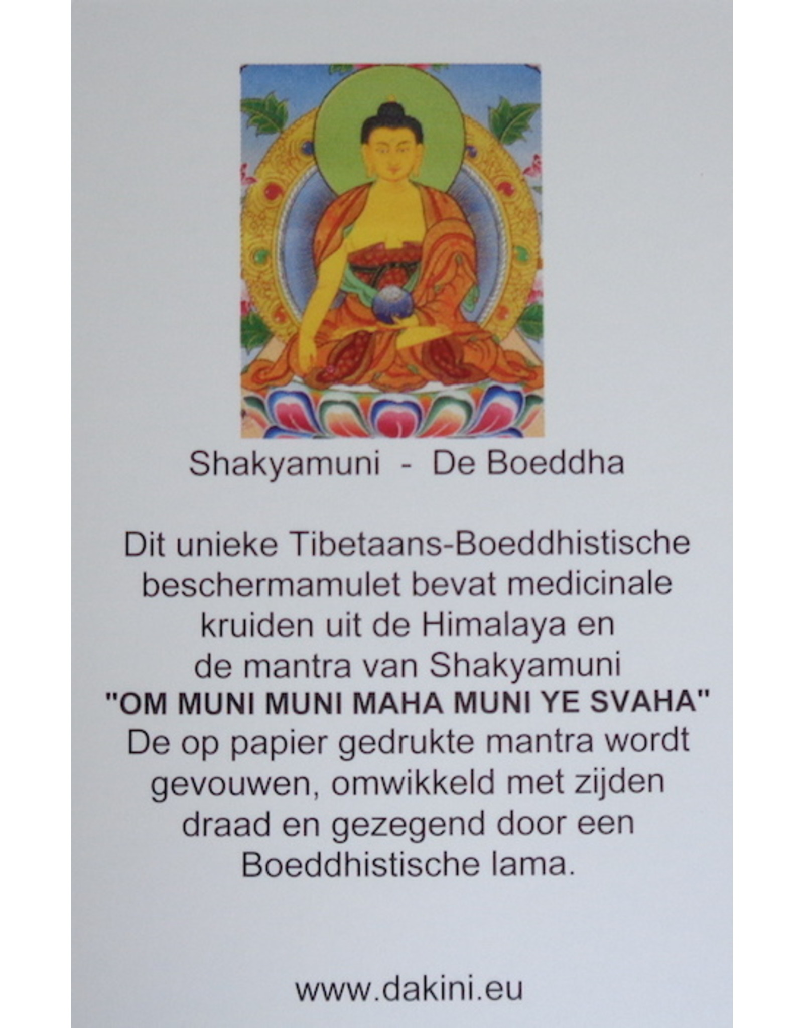 Dakini Tibetaans bescherm amulet Shakyamuni