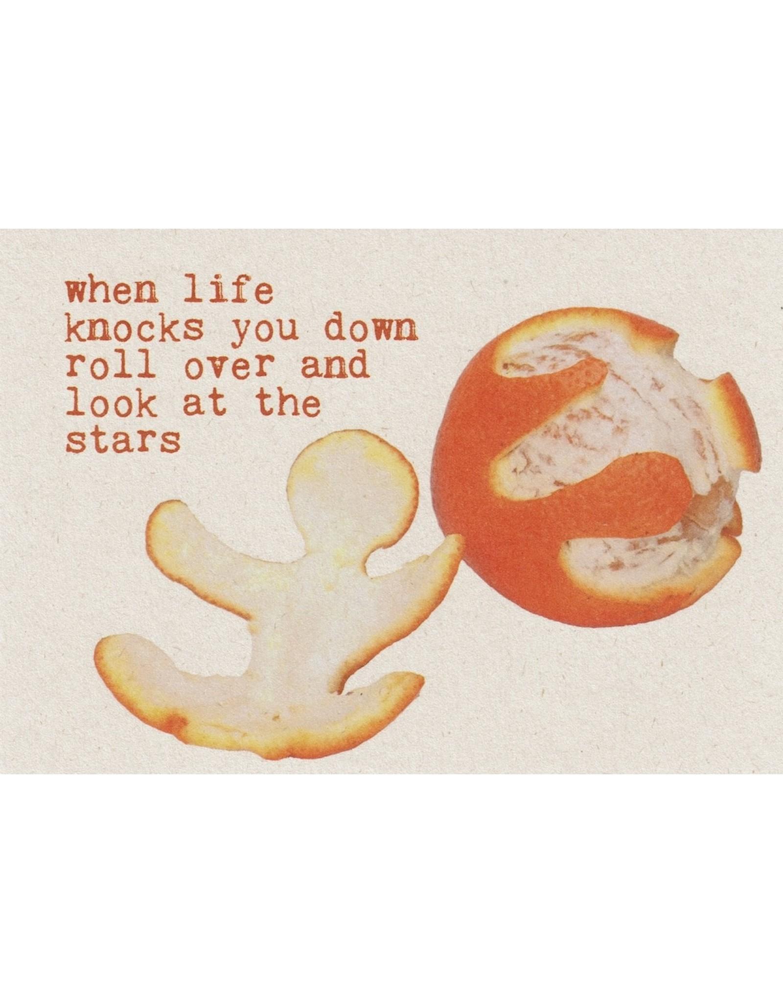 ZintenZ postkaart When life knocks you down
