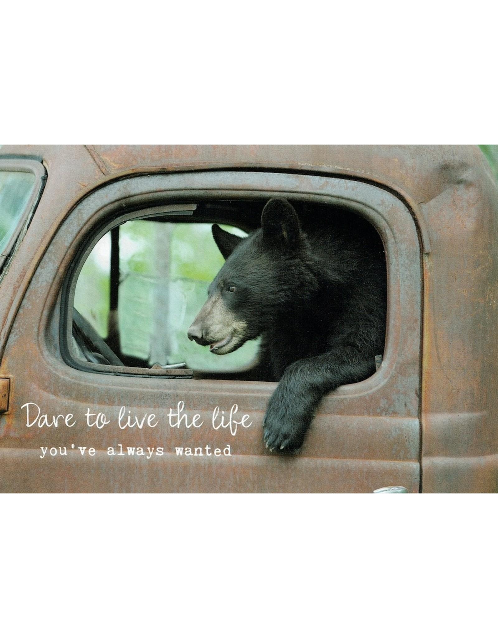 ZintenZ postcard Dare to live the life