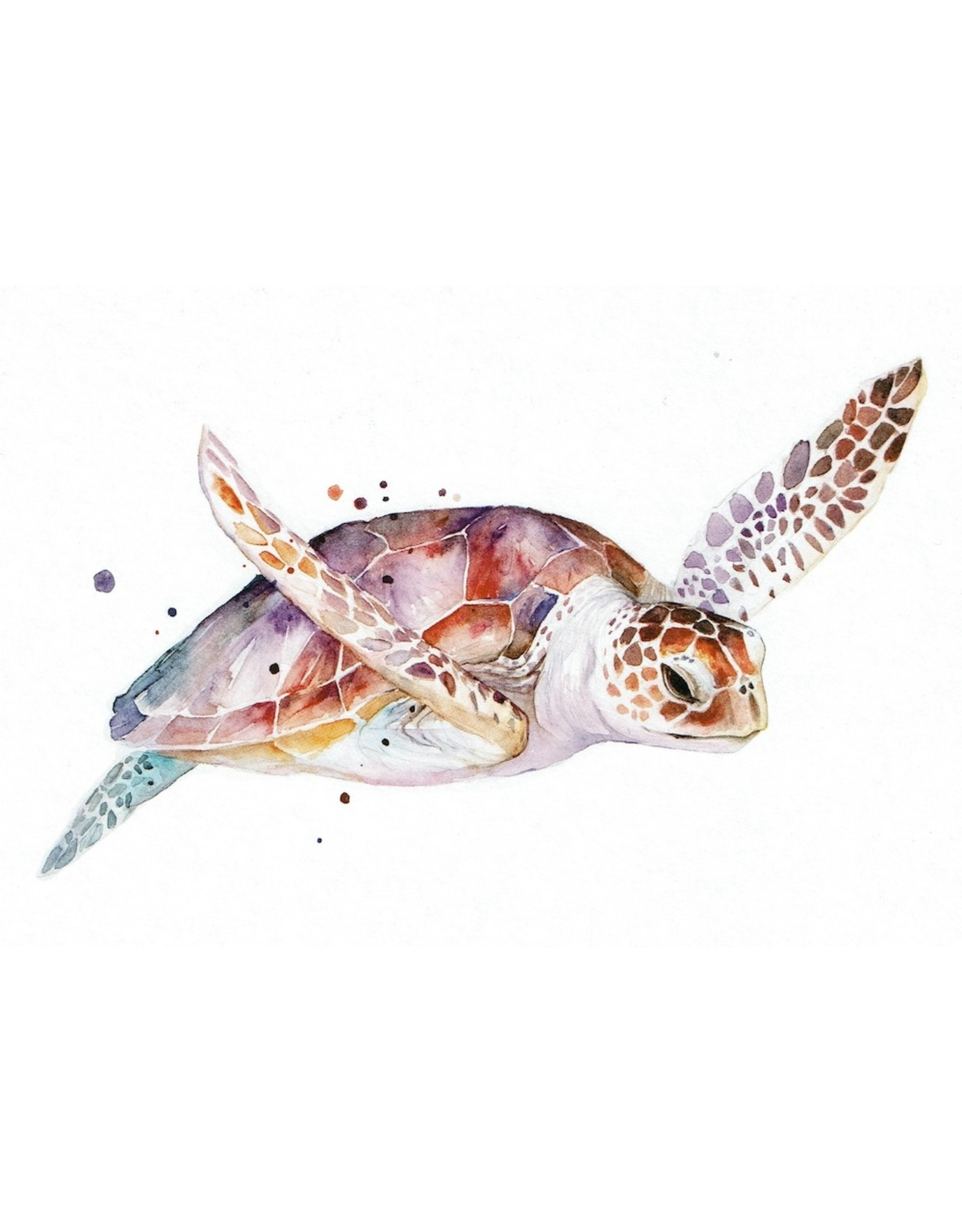 ZintenZ postkaart Schildpad